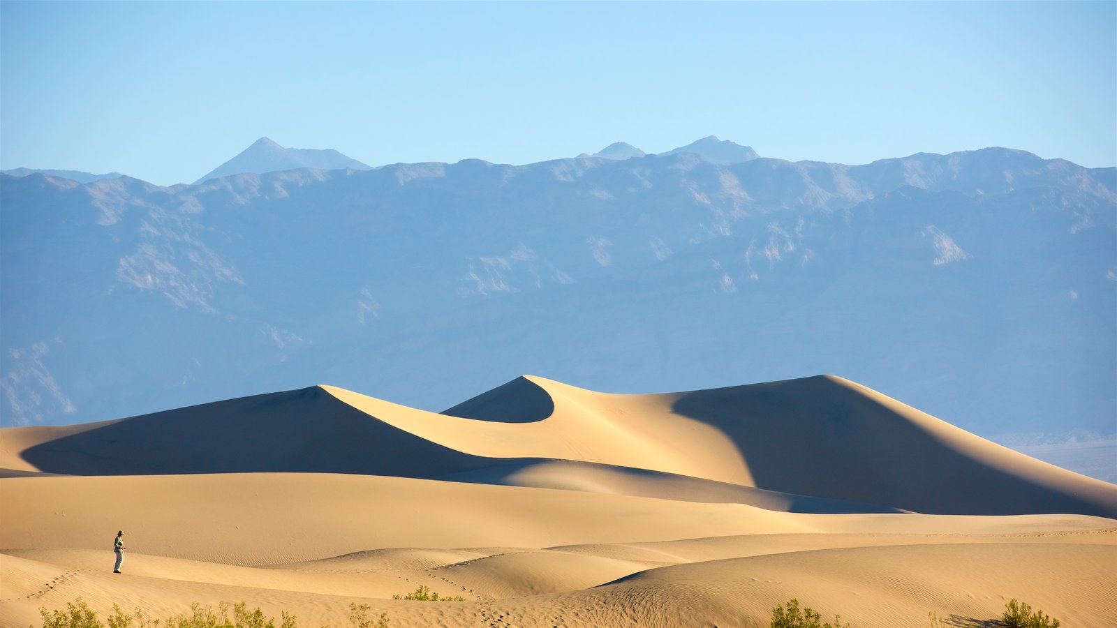 Mesquite Flat Sand Dunes which includes landscape views and desert views