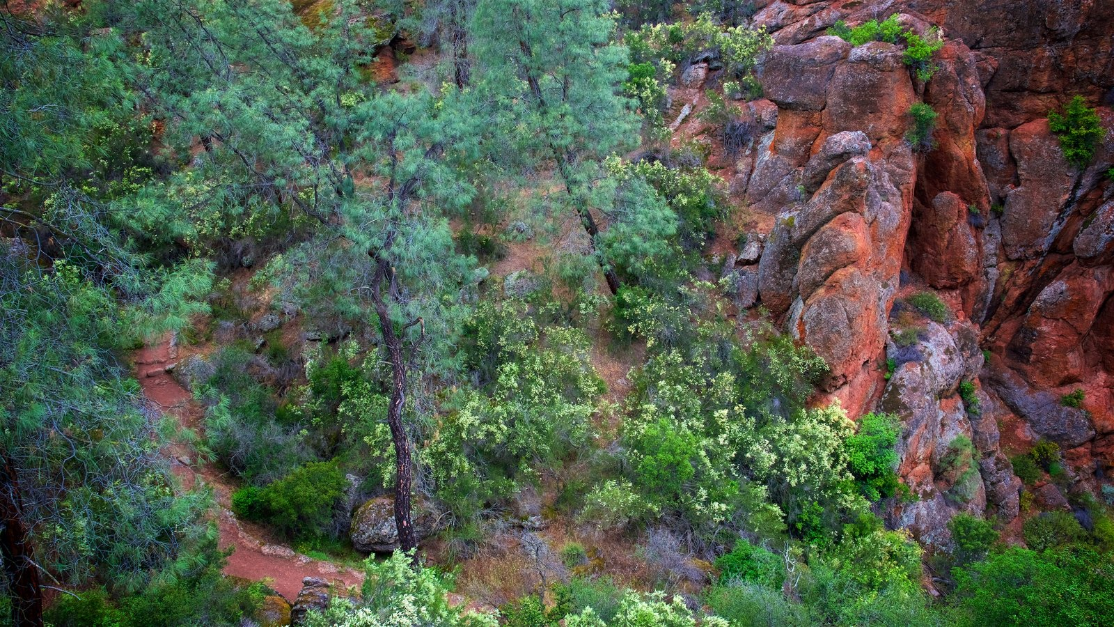 Pinnacles National Park featuring a gorge or canyon
