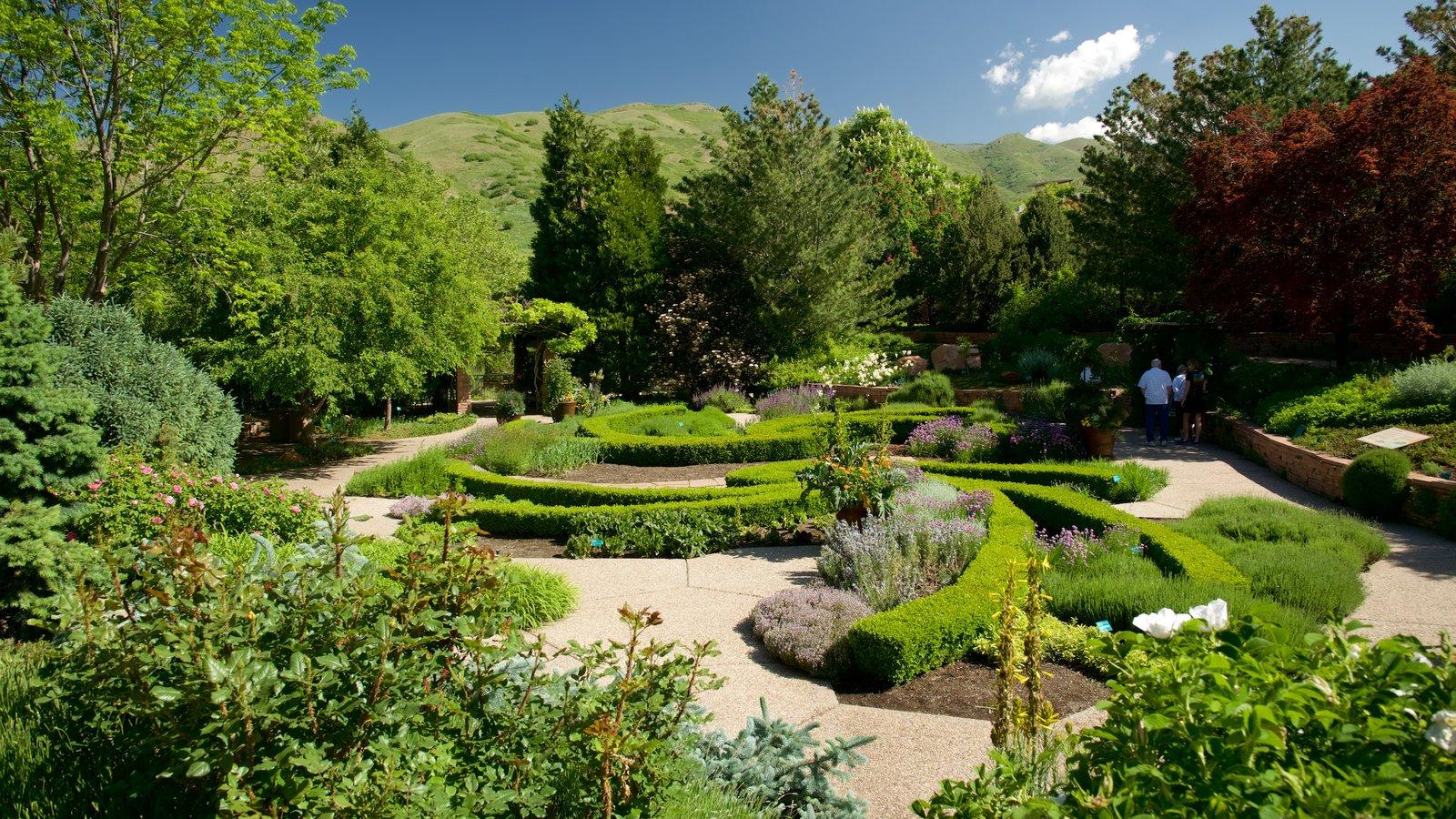 Jardín y arboretum Red Butte ofreciendo un parque