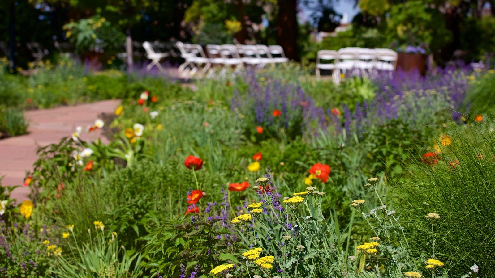 Jardín y arboretum Red Butte ofreciendo flores