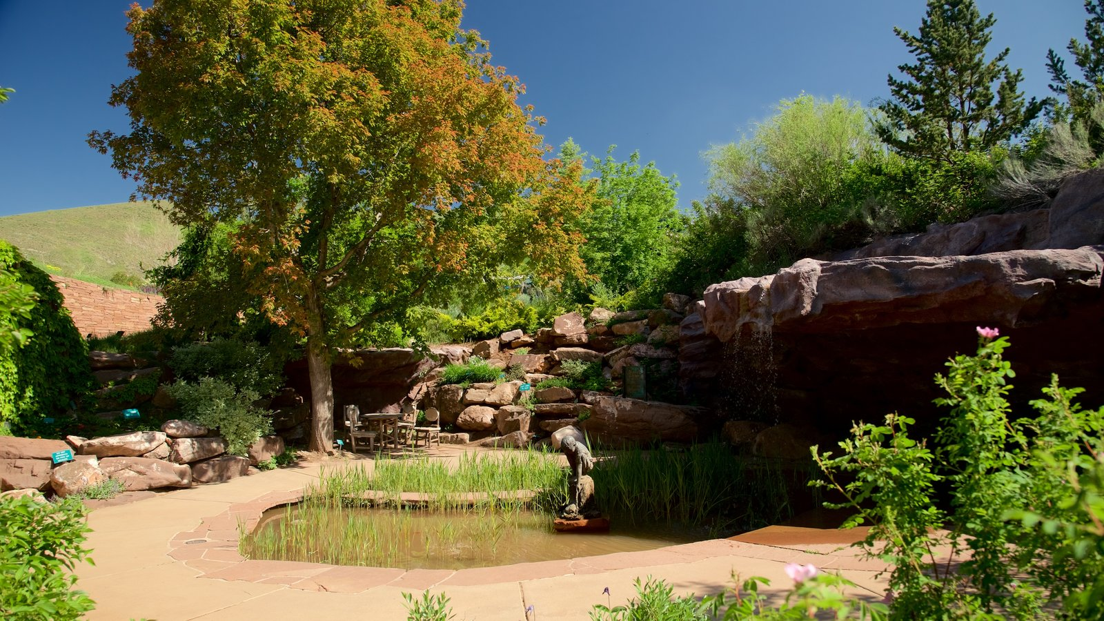 Red Butte Garden and Arboreteum featuring a garden