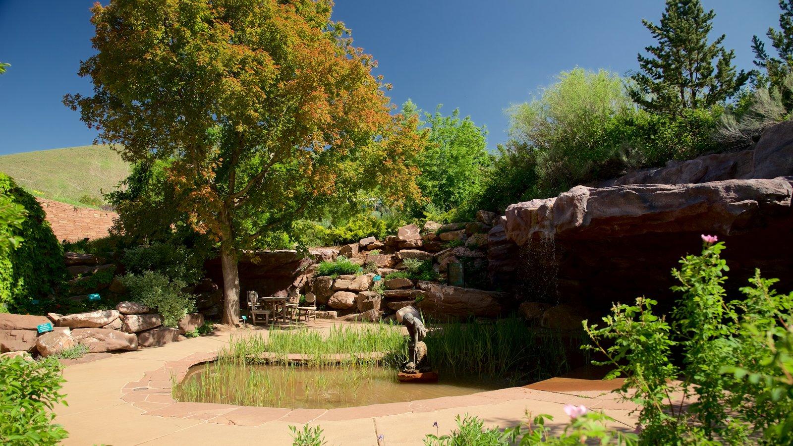 Jardín y arboretum Red Butte mostrando un jardín