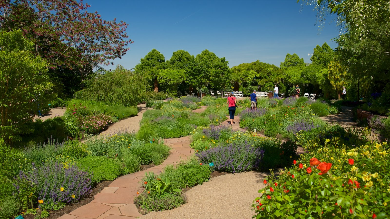 Red Butte Garden and Arboreteum featuring a garden and flowers as well as a small group of people