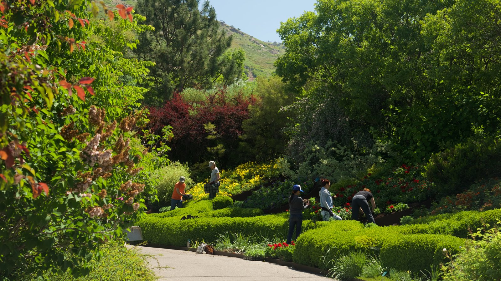 Red Butte Garden and Arboreteum showing a park as well as a small group of people