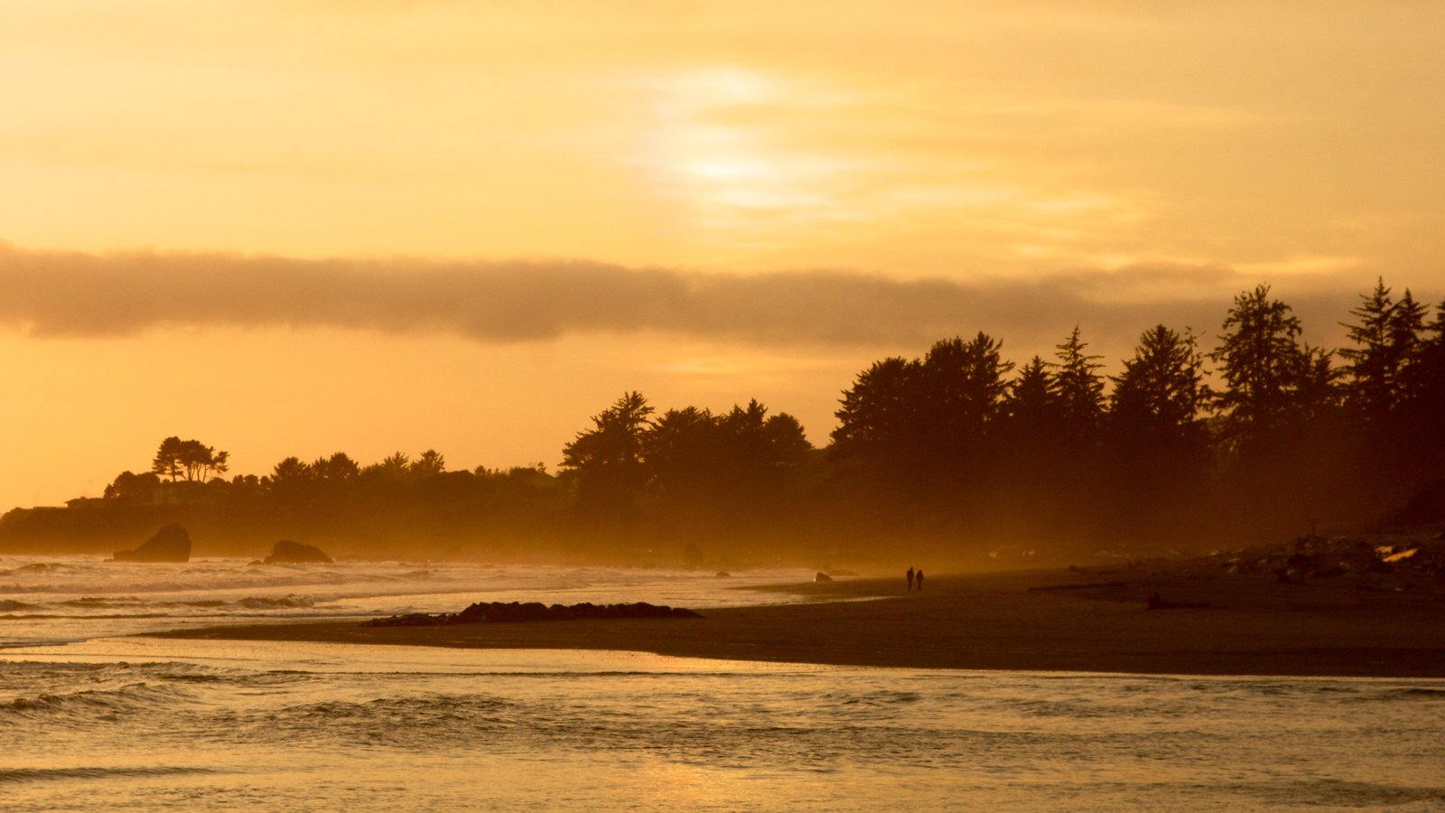 Redwood National and State Parks which includes a sunset and general coastal views