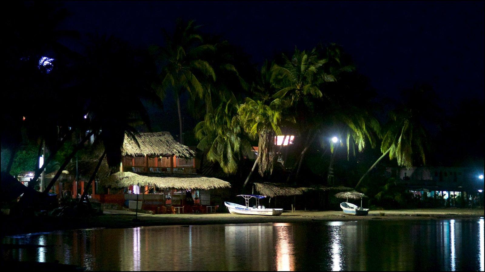 Puerto Escondido ofreciendo vistas generales de la costa, escenas tropicales y escenas nocturnas