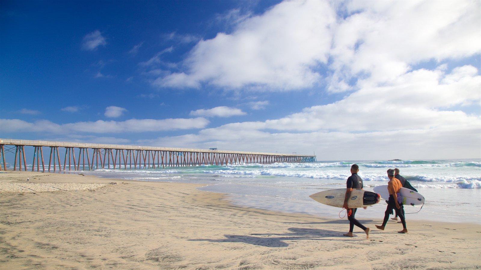 surfeadores caminando por las playas de Rosarito