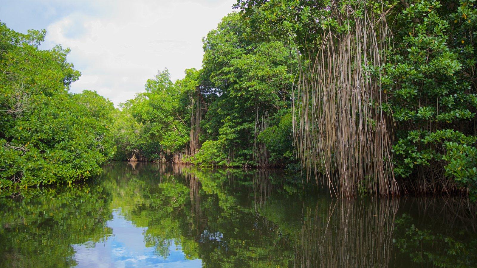 Vista de las Lagunas de Chacahua