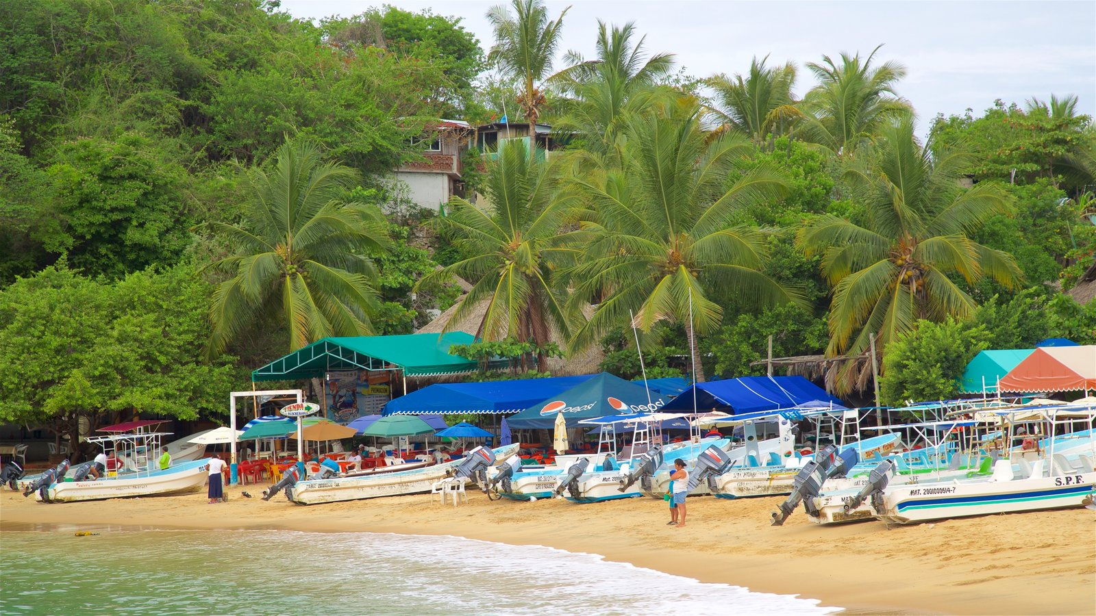 Playa Puerto Angelito que incluye una playa de arena, escenas tropicales y vistas generales de la costa