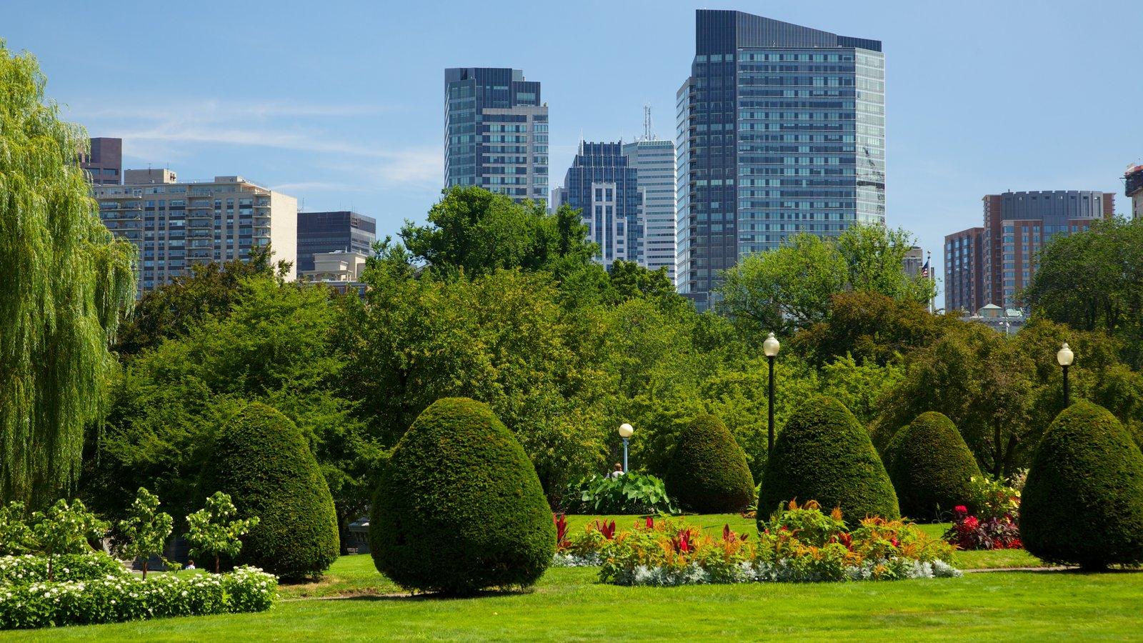 Boston Common mostrando flores, um arranha-céu e um parque
