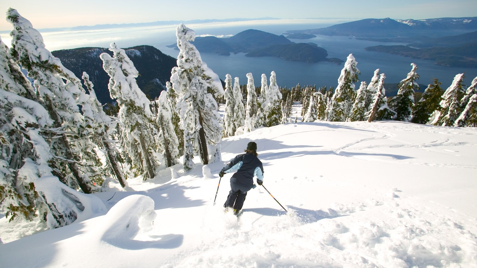Cypress Mountain which includes landscape views, mountains and snow skiing
