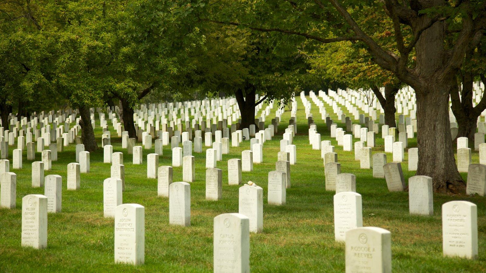 Arlington National Cemetery mostrando paisagem, um memorial e um cemitério