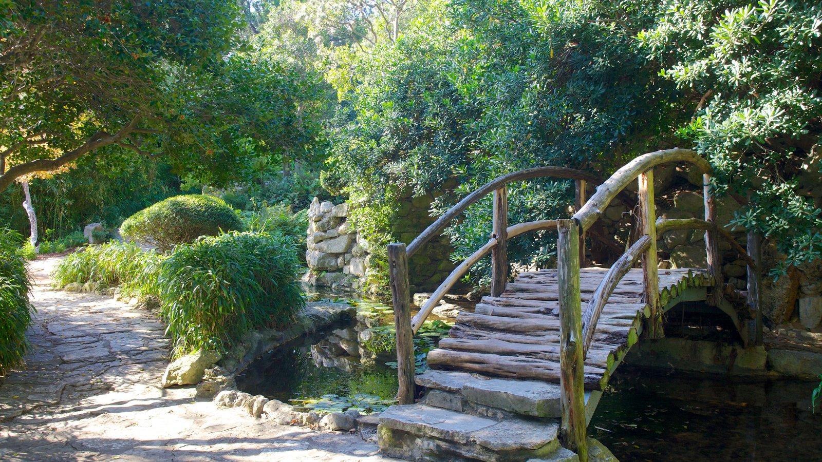 Austin which includes a garden, a bridge and a pond