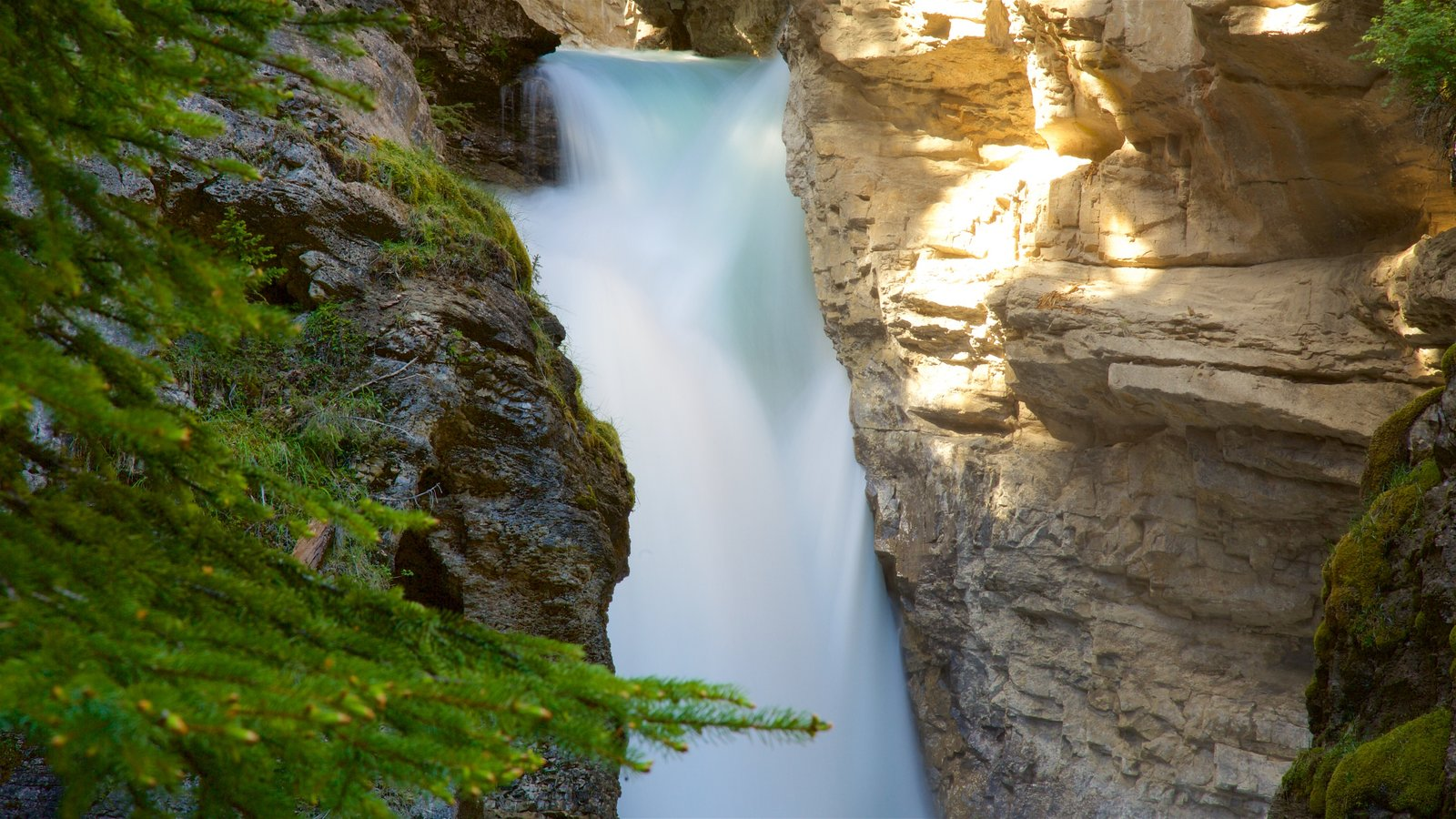 Johnston Canyon showing a waterfall