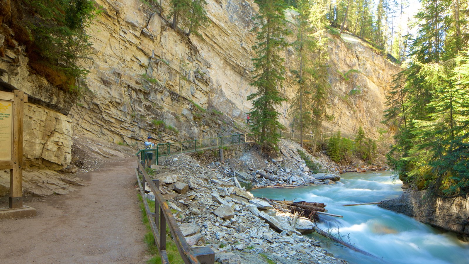 Johnston Canyon showing a gorge or canyon and a river or creek