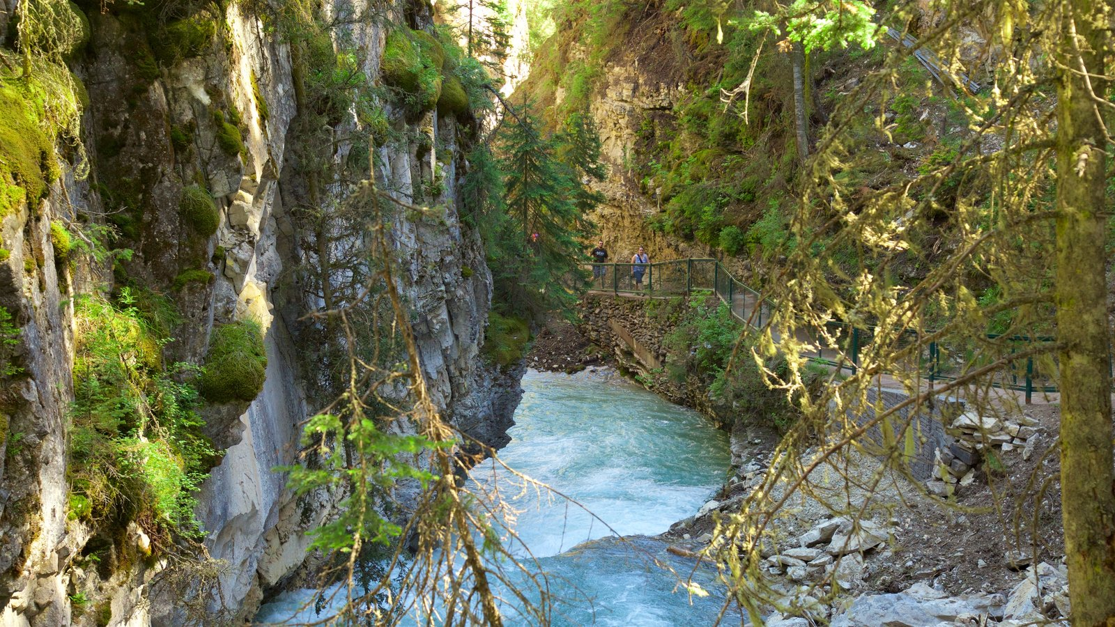 Johnston Canyon featuring a river or creek and a gorge or canyon