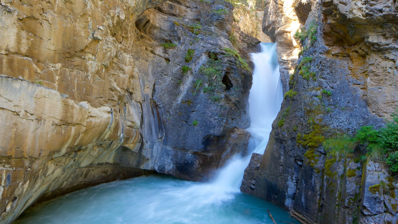 Johnston Canyon which includes a river or creek and a gorge or canyon