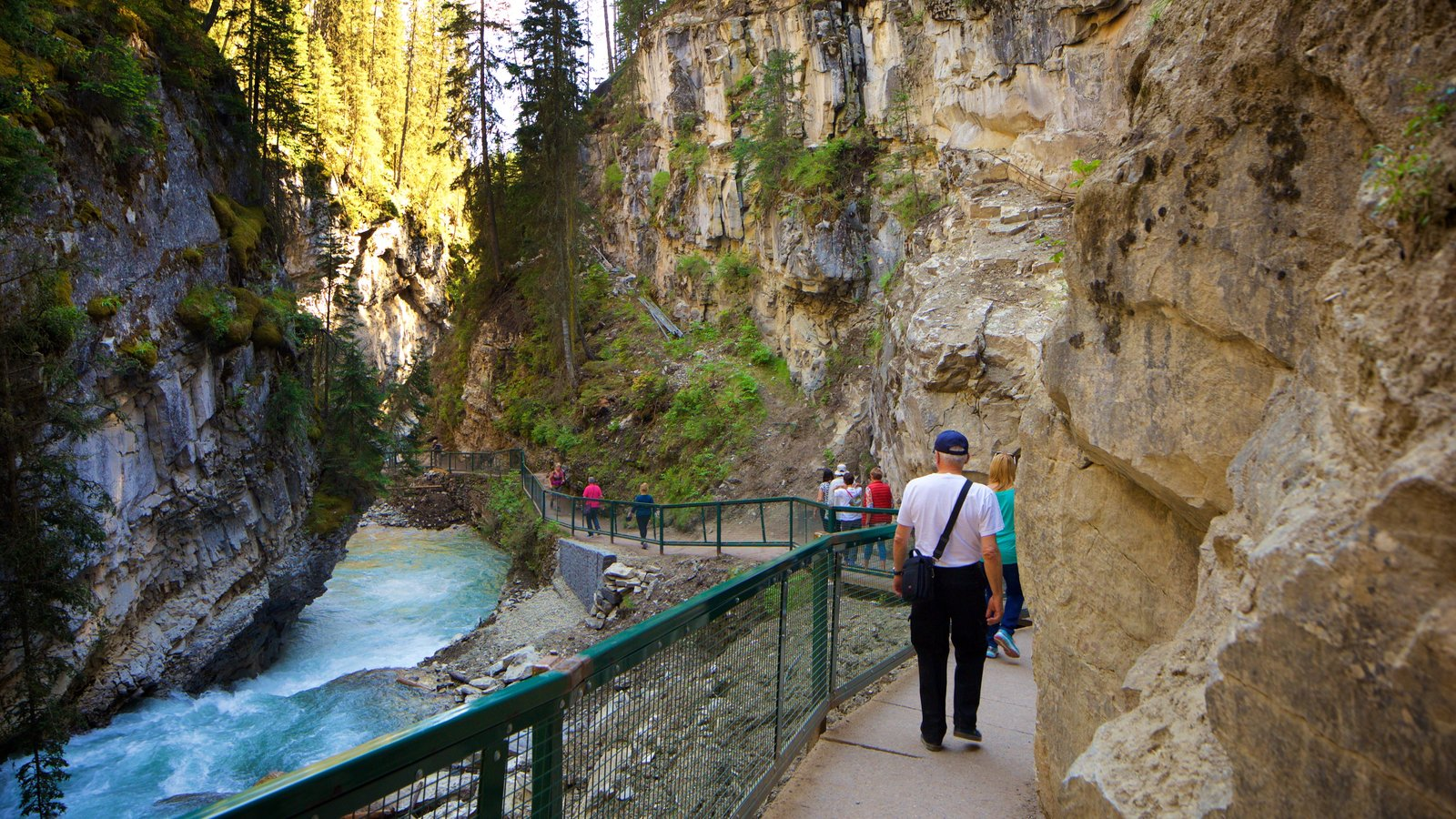 Johnston Canyon showing hiking or walking, a gorge or canyon and a river or creek