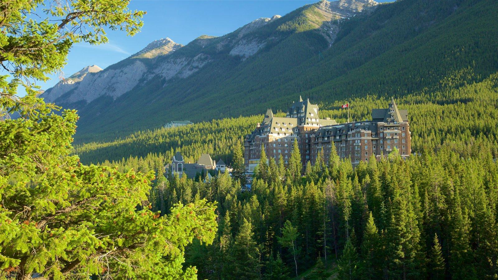 Parque nacional Banff que incluye bosques y escenas tranquilas