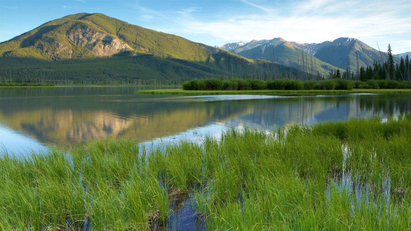 Banff featuring mountains, tranquil scenes and wetlands