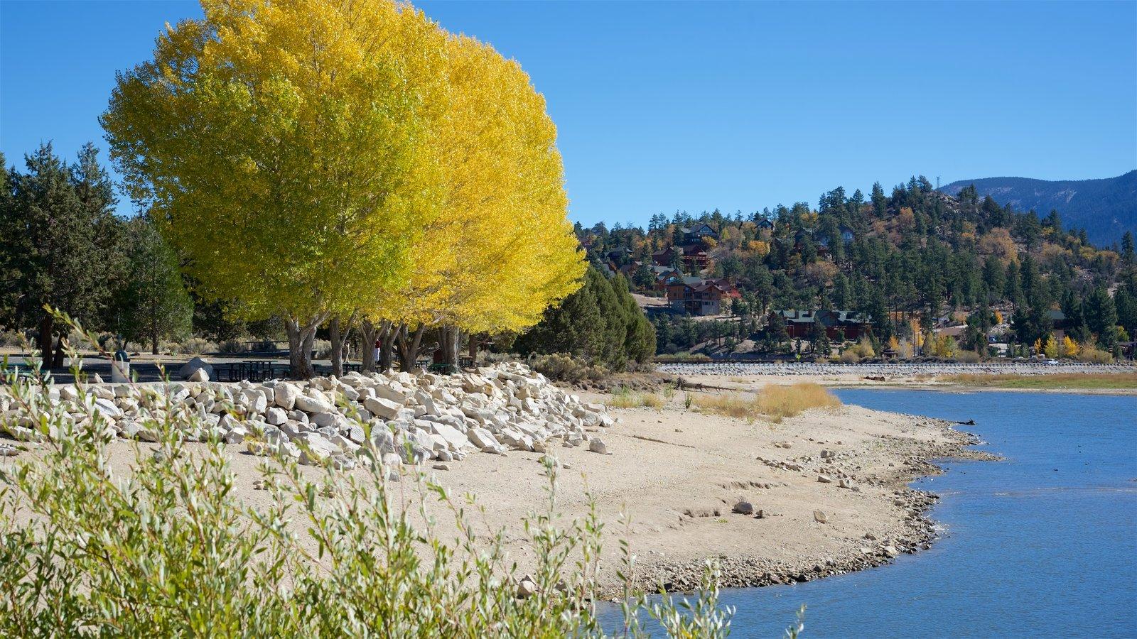 Big Bear Lake mostrando um lago ou charco e uma praia de areia