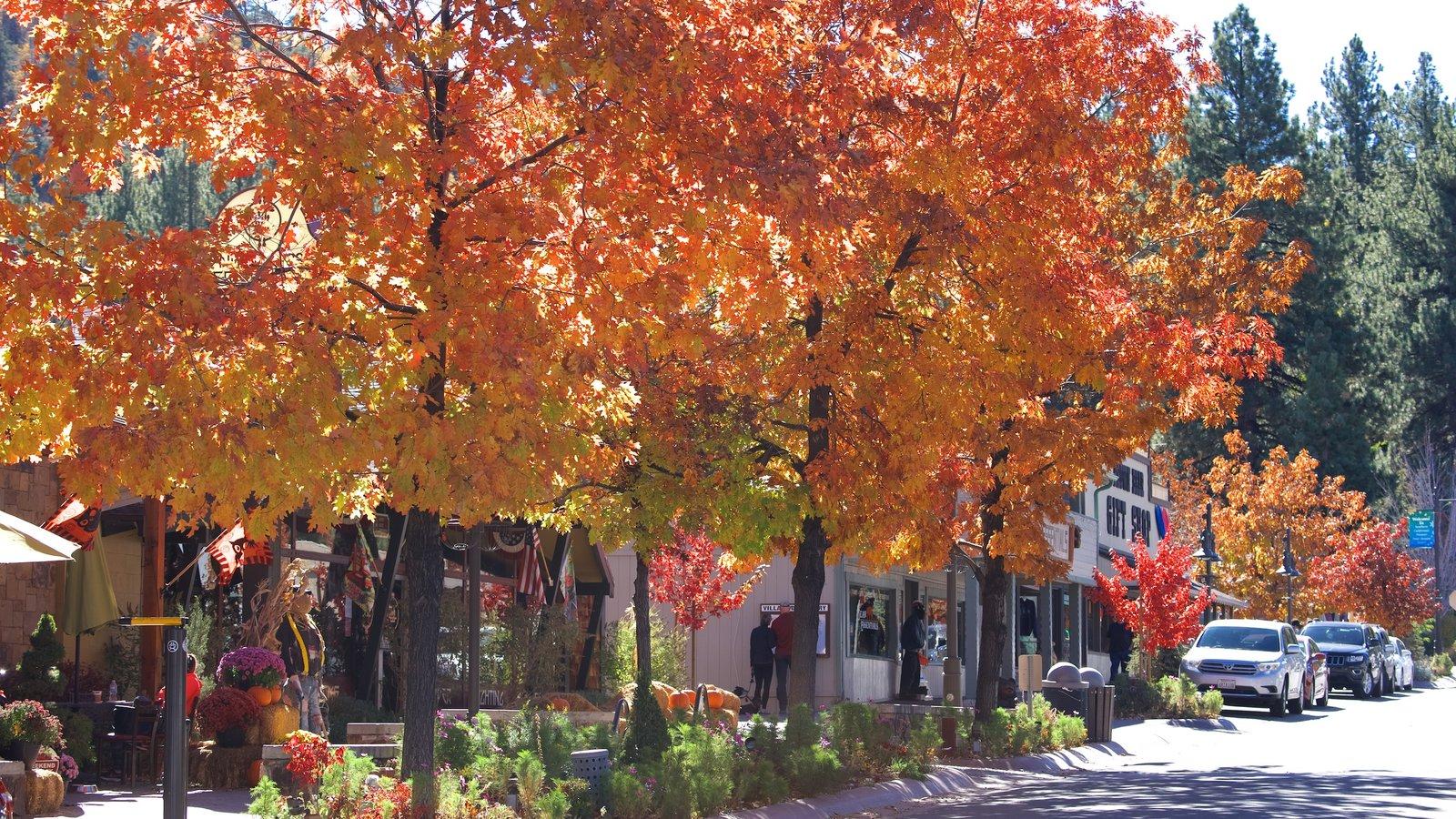 Big Bear Lake caracterizando folhas de outono