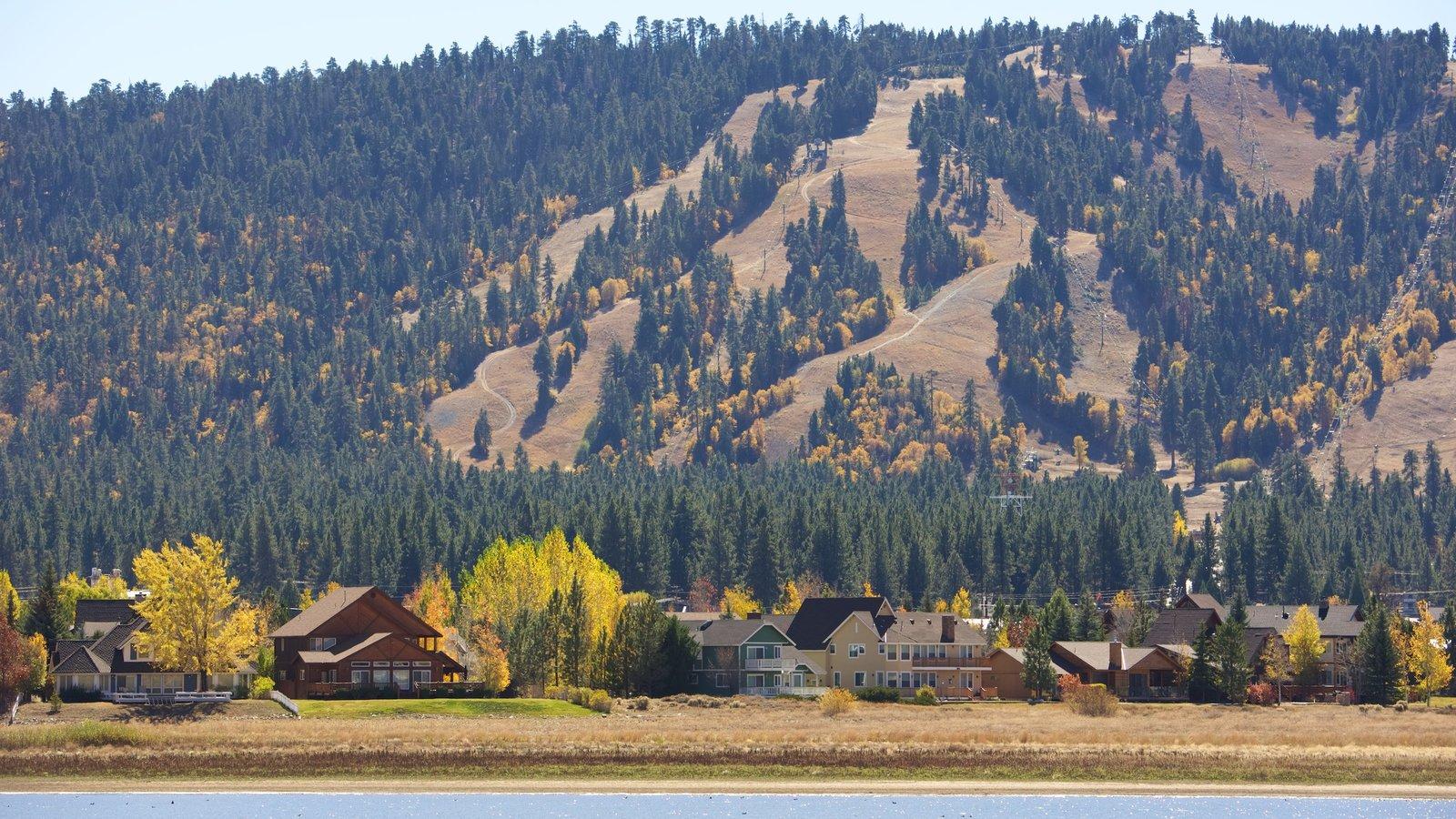 Big Bear Lake que inclui um rio ou córrego, uma cidade pequena ou vila e cenas tranquilas