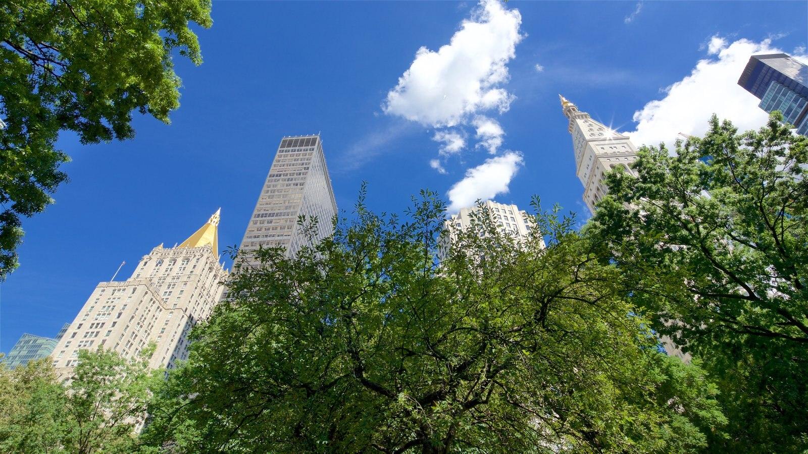 Madison Square Park mostrando um jardim e uma cidade