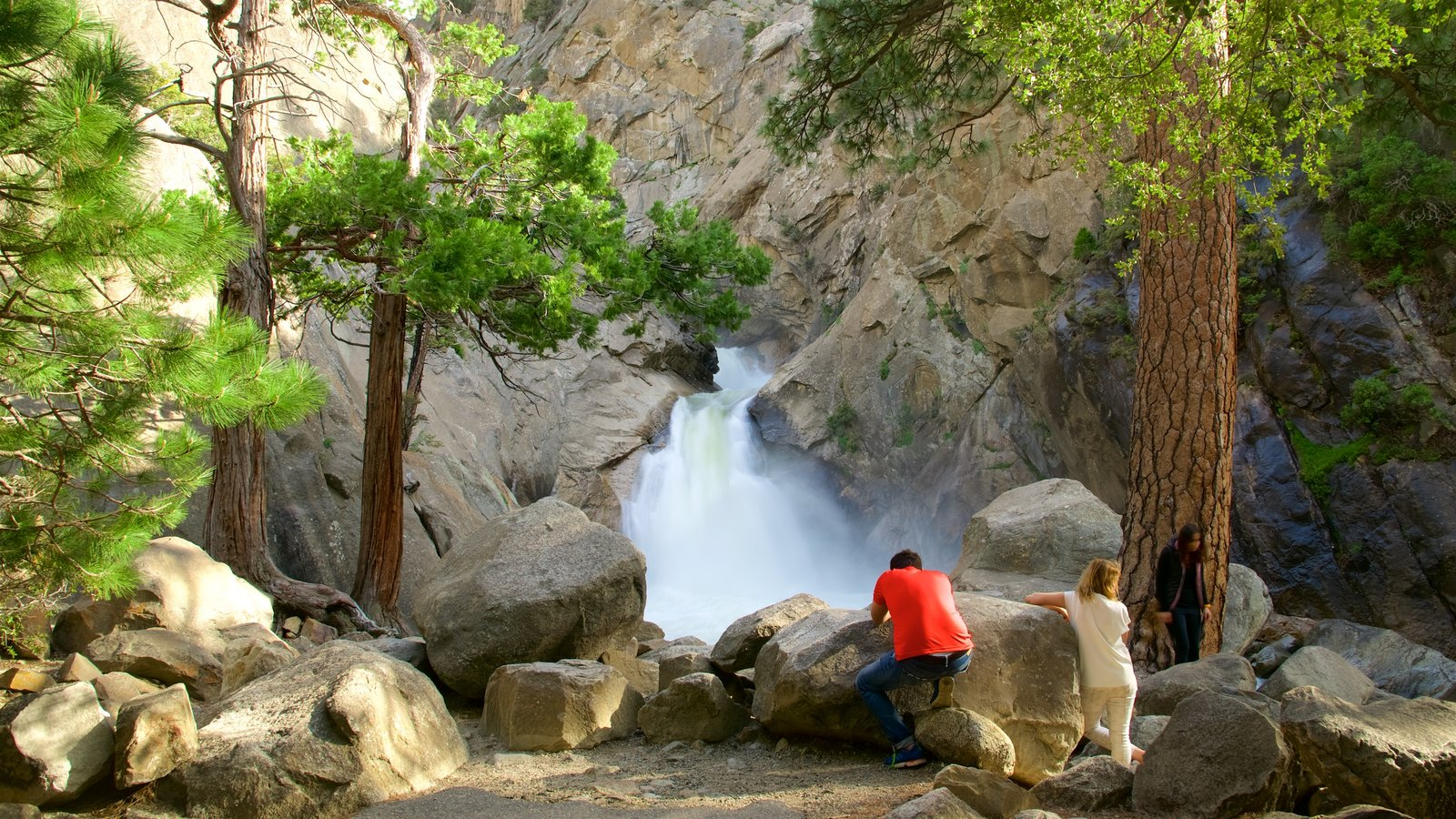 kings canyon national pk guys Walk amongst the world's most gigantic trees, gaze upon the huge canyons, feel the water splatter from amazing waterfalls and see the vast meadows at kings canyon and sequoia national park.