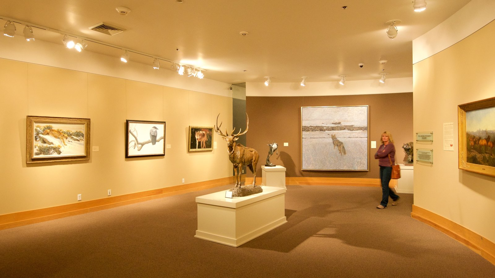 National Wildlife Art Museum mostrando vistas internas e arte