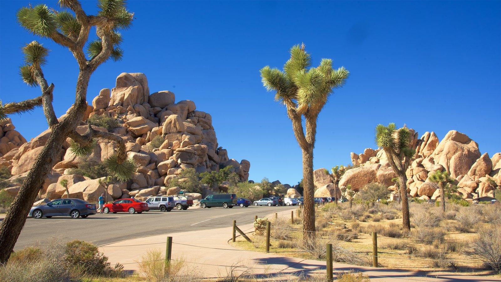 Parque Nacional de Joshua Tree caracterizando paisagens do deserto
