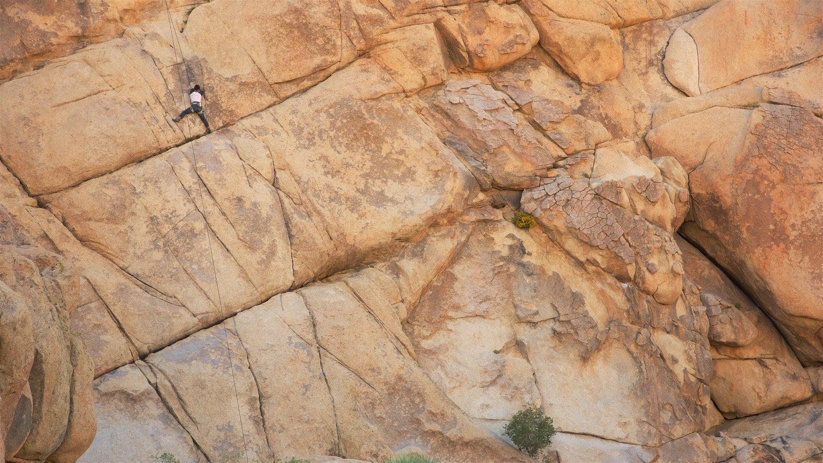 Parque Nacional de Joshua Tree mostrando montanhas e escalada assim como um homem sozinho