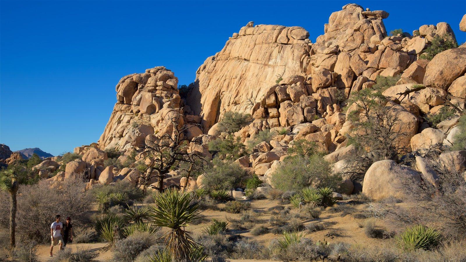 Condado de Riverside mostrando escenas tranquilas y vistas al desierto