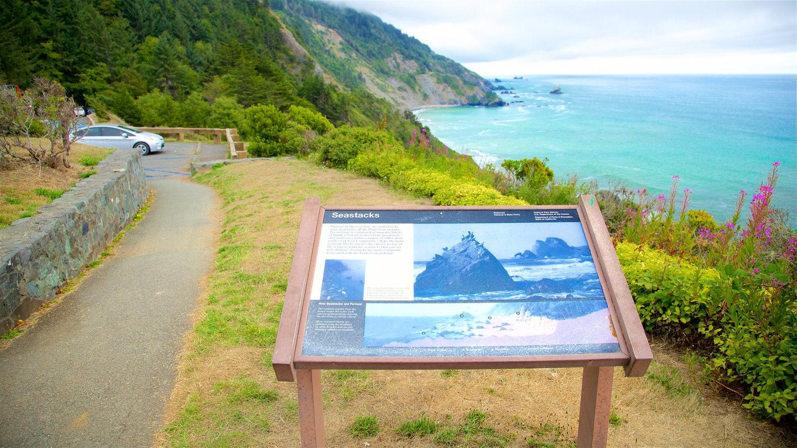 Redwood National and State Parks showing views, general coastal views and signage