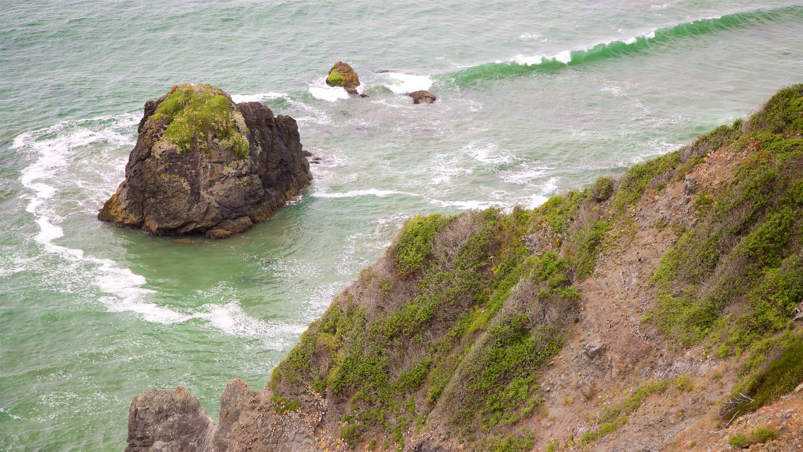 Redwood National and State Parks which includes rugged coastline and surf