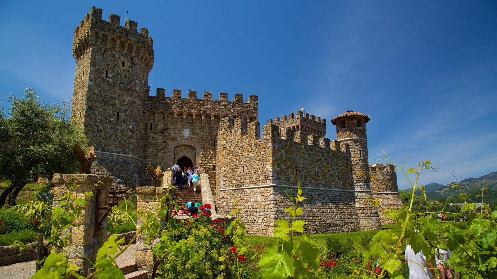 Castello di Amorosa mostrando una iglesia o catedral, flores silvestres y elementos del patrimonio