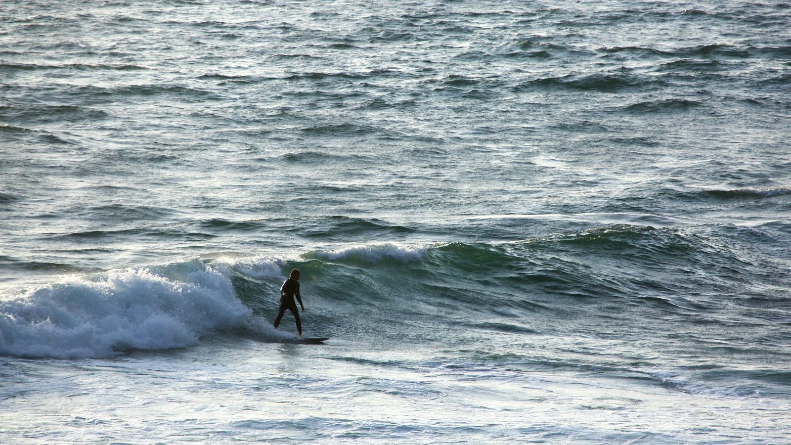 Sonoma Valley which includes general coastal views, surfing and surf