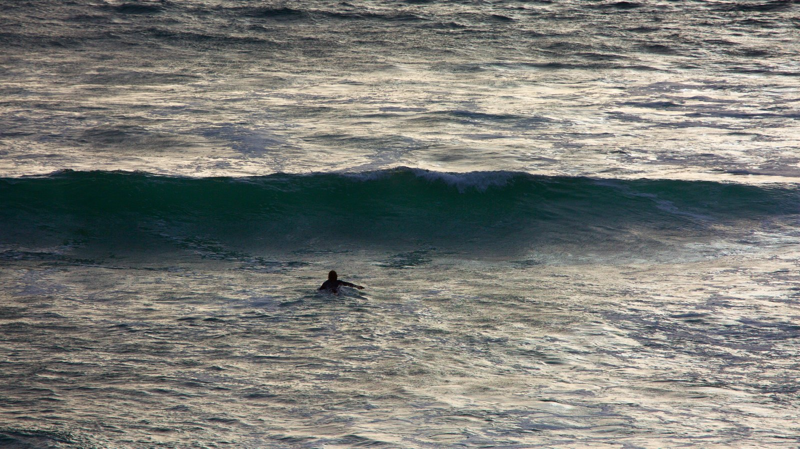 Sonoma Valley showing surf, general coastal views and surfing