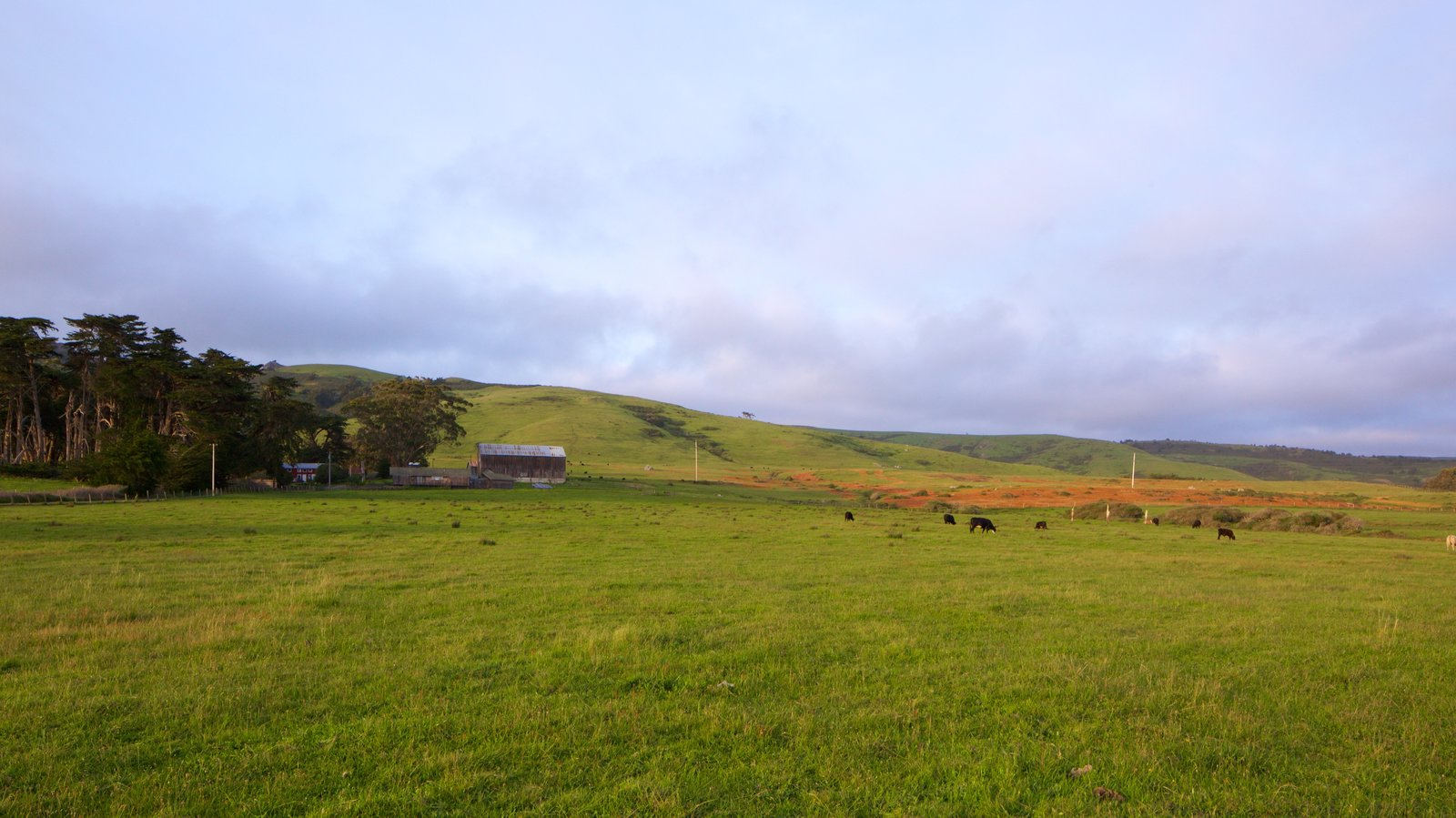Sonoma Valley featuring tranquil scenes and landscape views