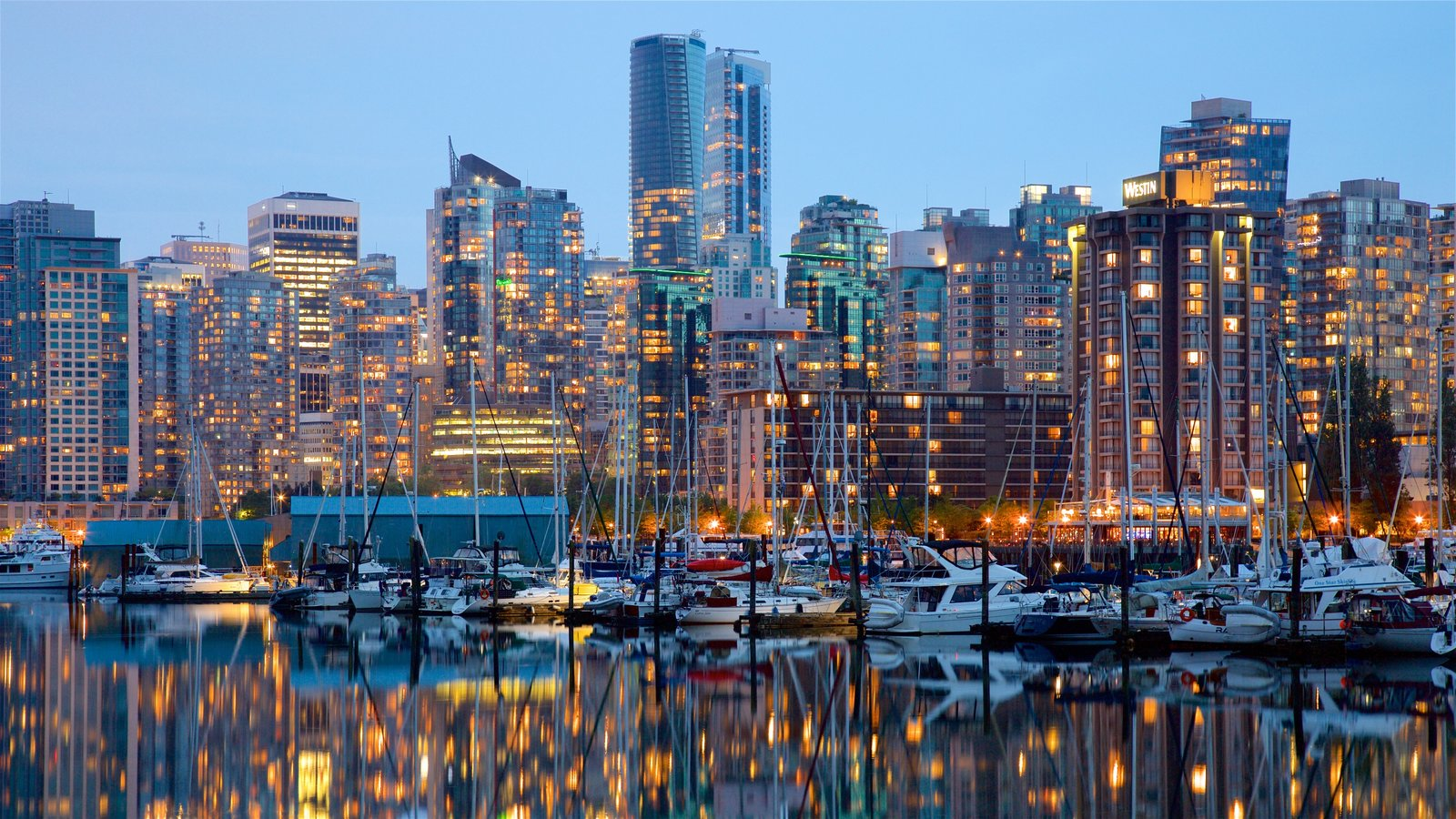 Stanley Park showing a high rise building, a bay or harbor and a city