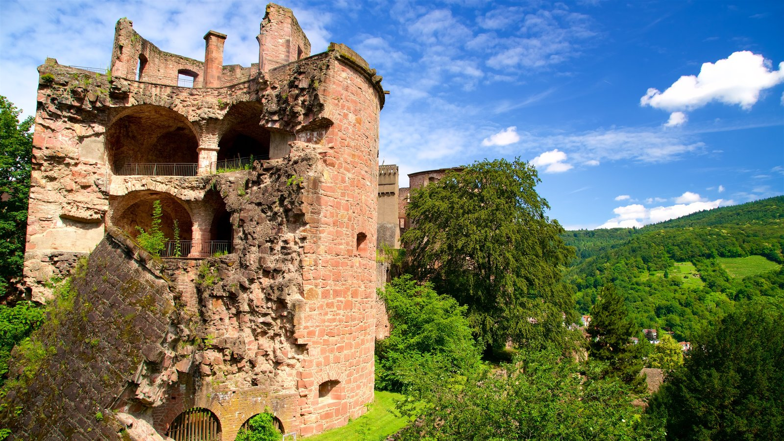 Heidelberg Castle showing a ruin and tranquil scenes