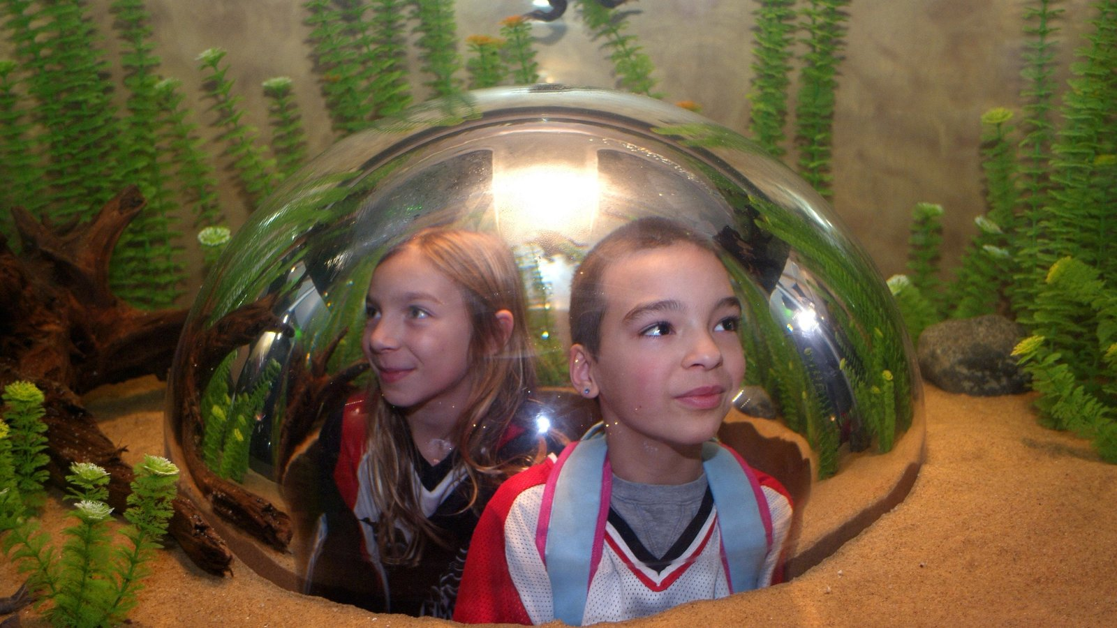 Vancouver Aquarium featuring marine life and interior views as well as children