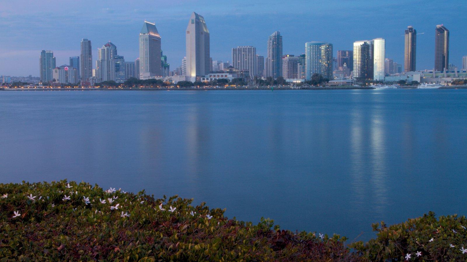 Coronado Beach que incluye vistas a la ciudad, un rascacielos y horizonte