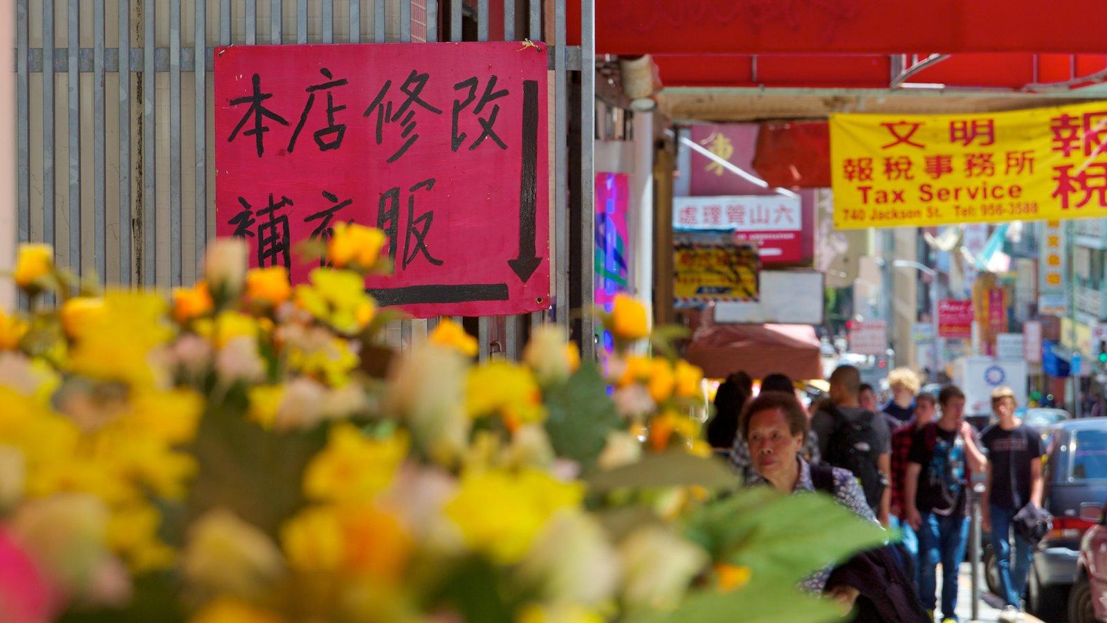 Chinatown mostrando cenas de rua, flores e sinalização