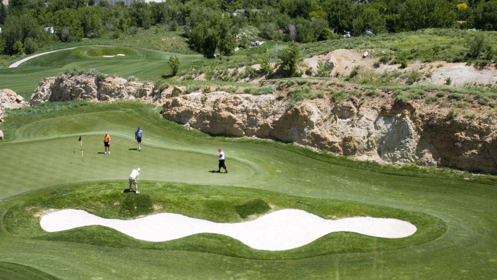 Golden caracterizando paisagem e golfe