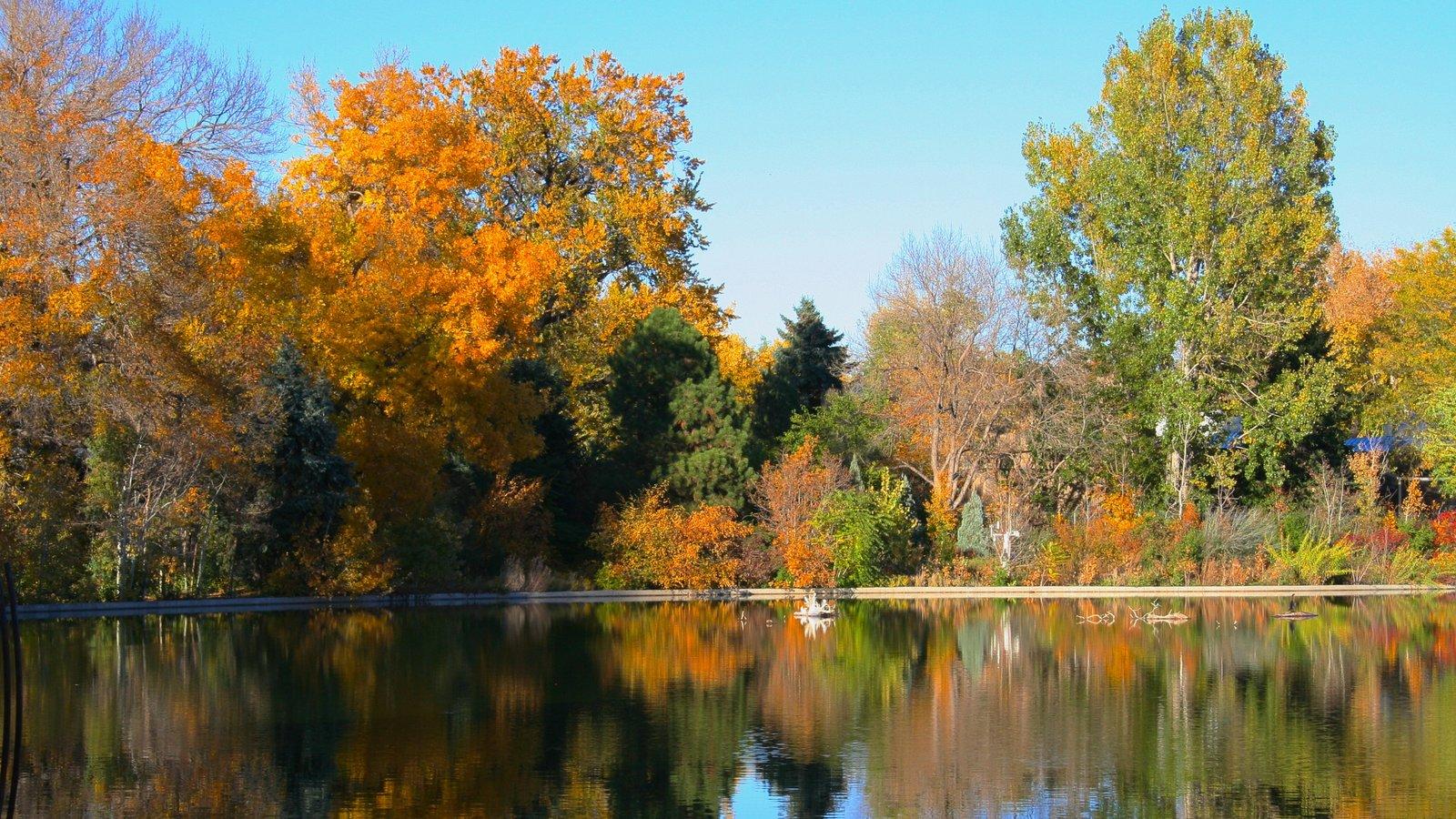 City Park caracterizando um lago, paisagem e florestas