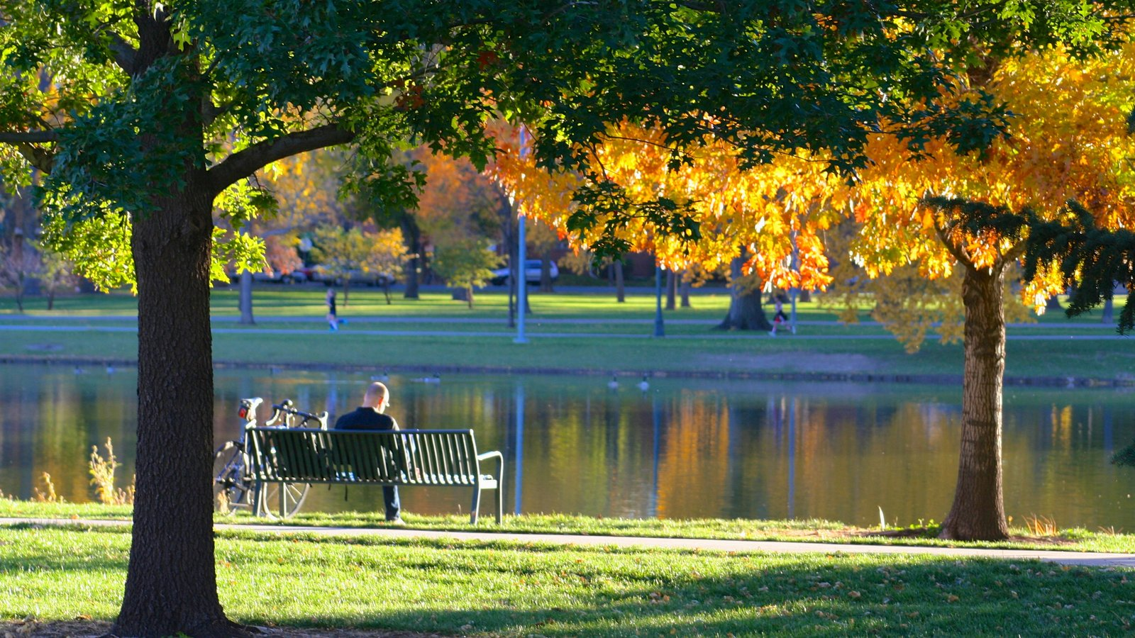 Fall Pictures: View Images Of Denver