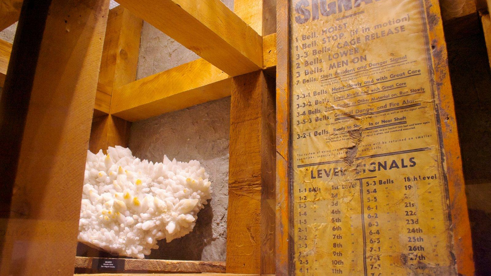 Denver Museum of Nature and Science mostrando sinalização e vistas internas