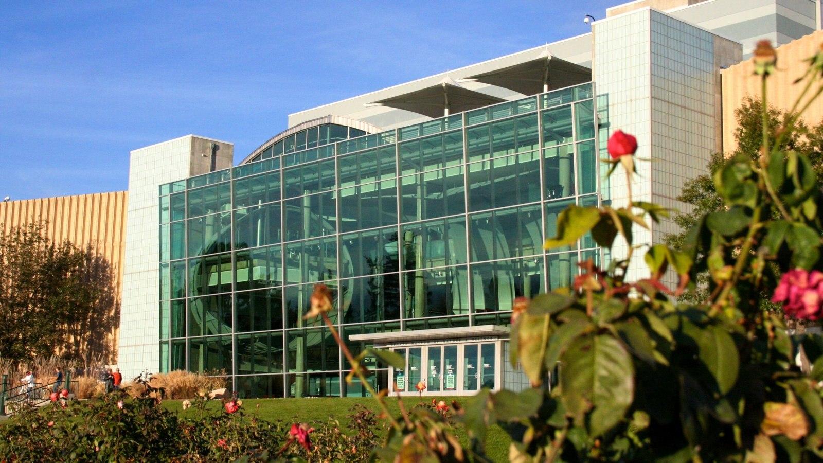Denver Museum of Nature and Science que inclui flores e uma cidade