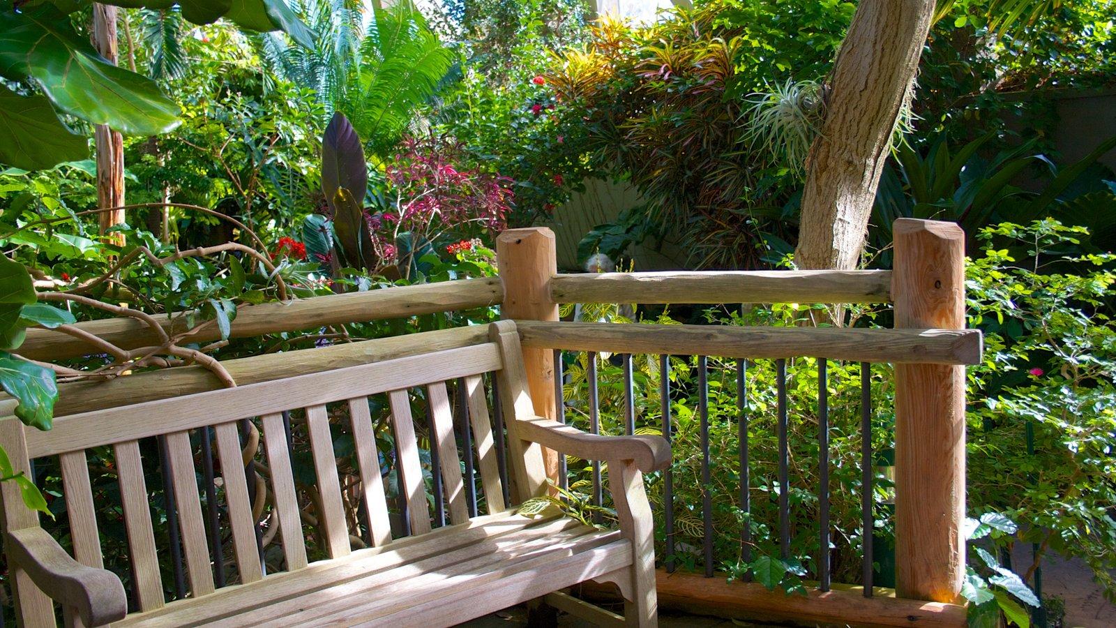Jardim Botânico de Denver caracterizando um jardim, flores e paisagem